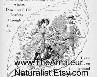 1902 Vintage Illustration, Charming Fall Scene with Boy and Girl, Antique Print, Digital Download