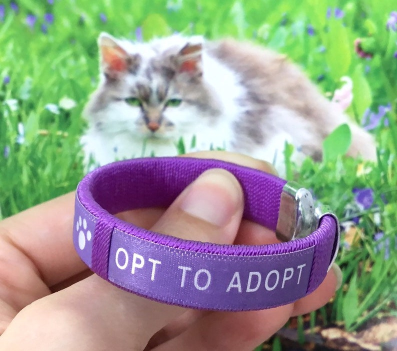 Child/'s Opt to Adopt Fabric Bracelet for Pet Rescue Dog Cat Paw Prints Animal Adoption Fundraiser Gift for Kids Children Boys Girls Woven