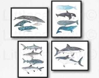 Whale Print Shark Print Set of 4 Watercolor Painting Print Nautical Print Bathroom Decor Beach Decor Shark Wall Art Whale Wall Decor