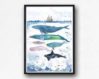 Whale Print Whales Under The Sea Watercolor Painting Whale Art Whale Gift Wall Art Nautical Decor Beach Bathroom Decor Orca Home Wall Decor