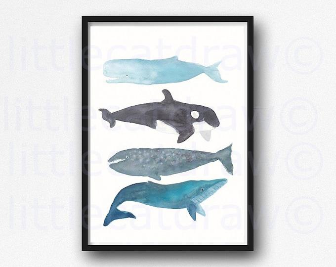 Whale Painting Print Watercolor Print Painting Bathroom Wall Decor Nautical Decor Whale Stack Art Print Home Decor Wall Art Beach Decor Orca