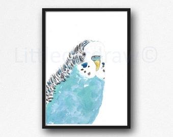 Budgie Portrait Print Bird Watercolor Painting Print Budgerigar Parakeet Art Print Watercolour Wall Art Bird Print Wall Decor Unframed