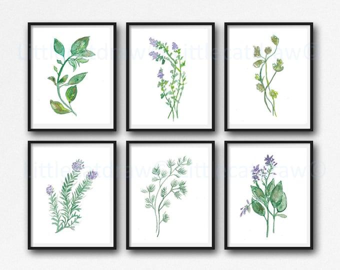 Herb Print Set of 6 Prints, Green Watercolor Painting Art, Botanical Kitchen Wall Decor, Basil, Thyme, Corriander, Rosemary, Mint, Oregano