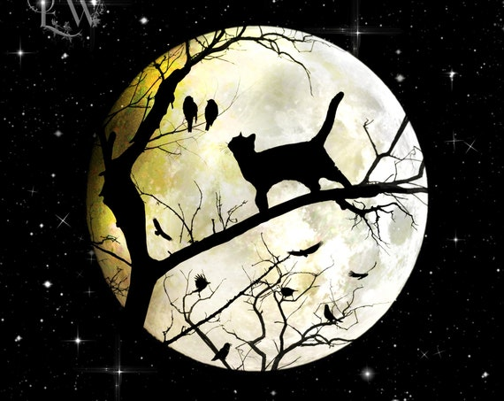 full moon night sky and black cat art print