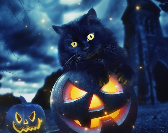 Halloween black kitten cat on pumpkin art print wall decor