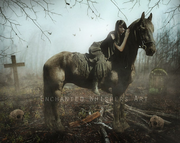 Gothic dark woman and horse in cemetery art print