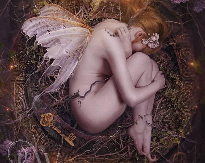mystical fantasy fairy pixie sleeping art print, fae wall decor, fairy poster
