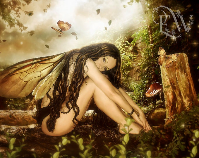 beautiful fantasy fairy in forest art print