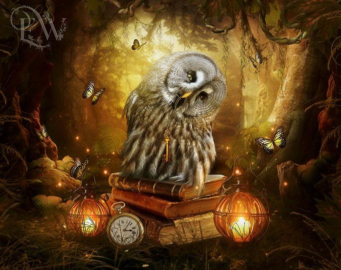 fantasy owl in woodland forest art print