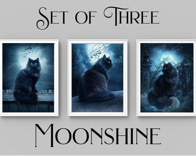 set of 3 black cat fantasy digital painting art prints, black cat wall decor