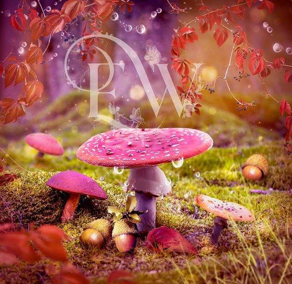 INSTANT DOWLOAD digital photography fantasy background