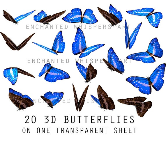 blue 3d butterflies overlays for Photoshop