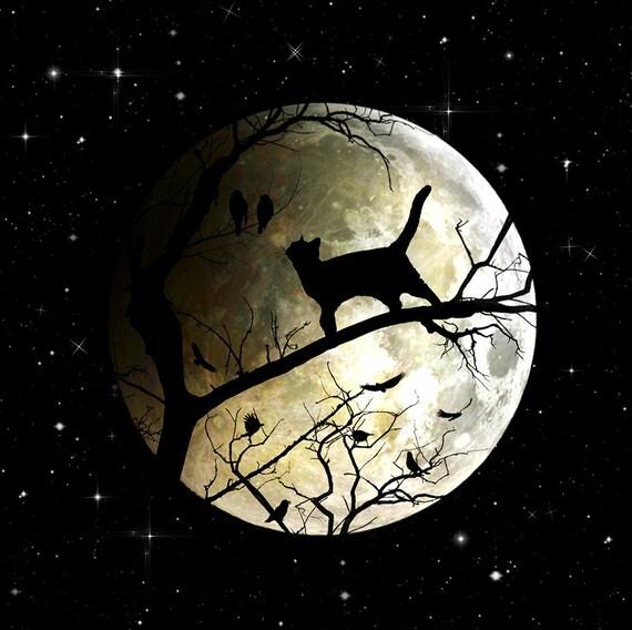 full moon night sky and black cat art print