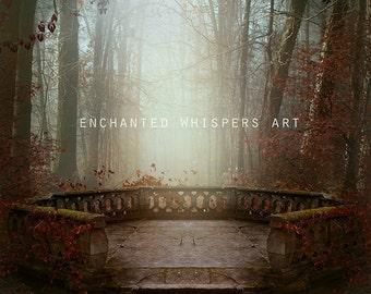 forest backdrop, INSTANT DOWNLOAD, photography background, fantasy backdrop, premade background, Autumn background, stock backdrop, digital