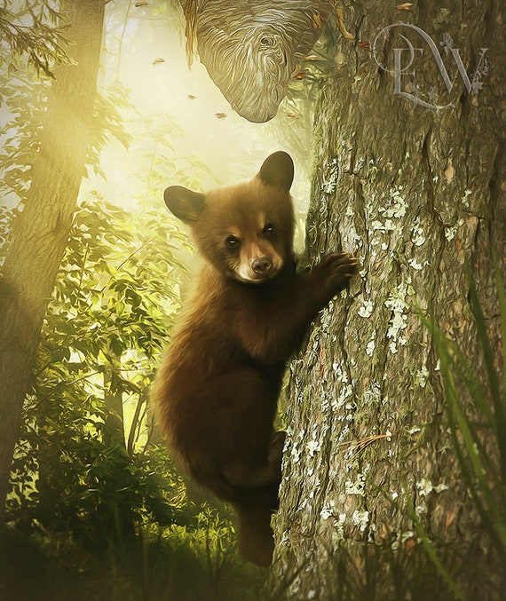 cute baby bear climbing tree art print