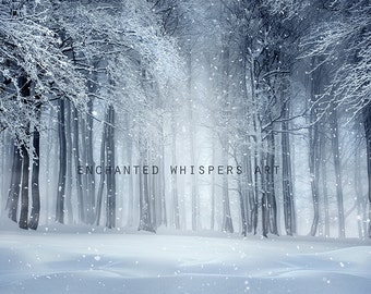 winter fantasy Holiday photography Photoshop digital background