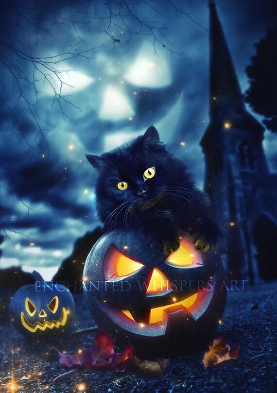 adorable black kitten cat on pumpkin Halloween art print