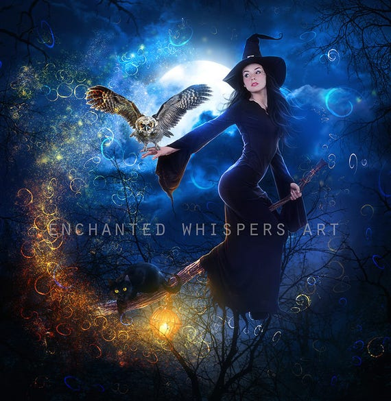 Halloween witch on broom with owl and black cat art print