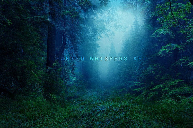 Beautiful Forest Photography Background For Photo Compositing Etsy