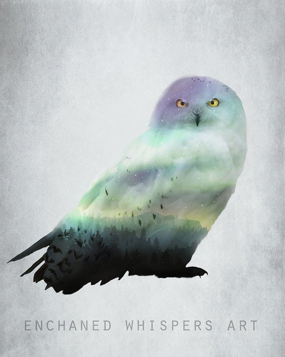 Snowy Owl with Northern lights surreal art print