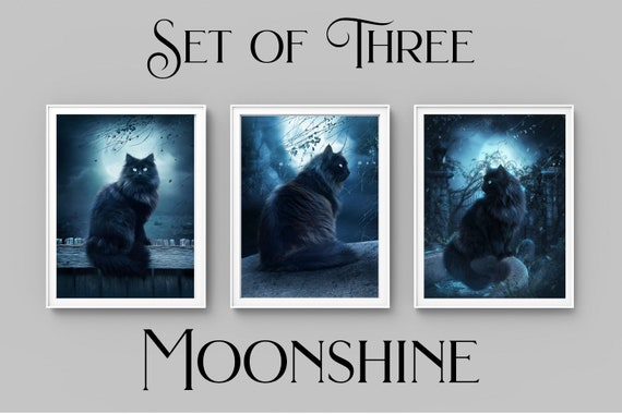 set of 3 black cat fantasy digital painting art prints, black cat wall decor