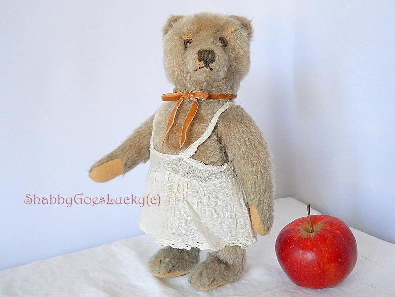 NurEtsy Vintage 1965 Bear edizione Steiff Original Ultima Teddy 66 wNnOkP80X