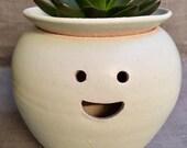 Hairy Babes Plant Pot: ALEX