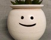 Hairy Babes Plant Pot Mini: JUSTININO
