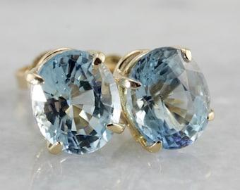 Large Blue Topaz Stud Earrings W1XV16-P