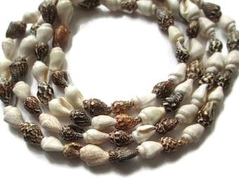 Vintage HIGBEE'S Cleveland Hawaiian Shell Lei Necklace
