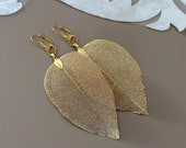 Real Leaf Earrings, Gold Leaf Earrings, Wedding Jewelry, Natural Dangle, Woodland Jewelry, 18K Gold Dipped Earrings, Unique Birthday Gift