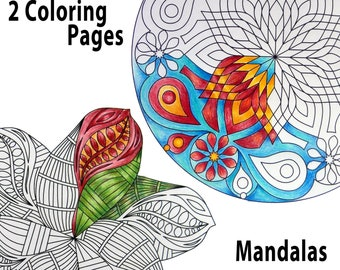 2 Coloring Pages for adults, Printable Commercial and Educational Use, Mandala Flower, Instant Download