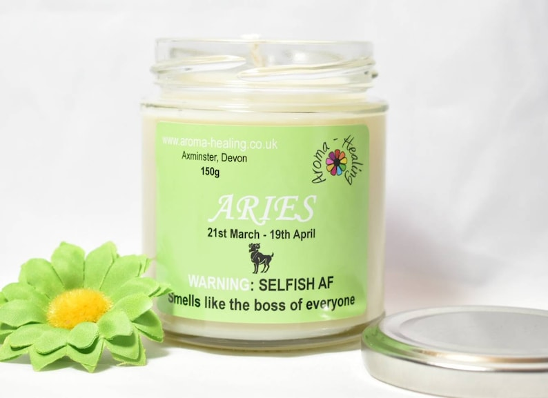 Aries Candle Birthday Candle Funny Aries Candle Gift image 0