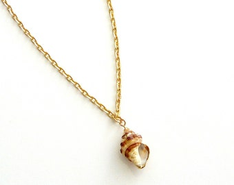 Gold shell pendant, Sea shell gold chain necklace, Ocean necklace, Summer necklace, Beach tropical nature necklace, Sea lover gift