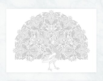 Peacock Feathers Coloring Page Adult Pages Boho Poster Wall Art To Color In Birds Pattern