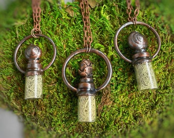 Old Man's Beard, Lichen, Pine Cone Necklace, Snail Shell Jewelry, Nature Pendant, Woodland Jewelry, Glass, Copper Electroformed Jewelry