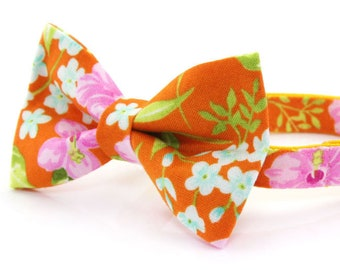 8b5baba2e0f4 Bow Tie Cat Collar Set -