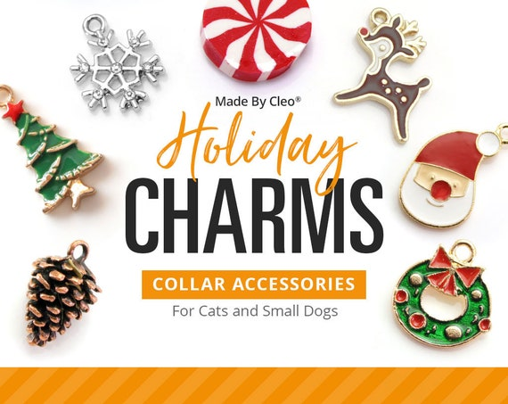 HALLOWEEN PUMPKIN  Pet Dog Collar Charm Tags or Keyring Pug poodle spaniel