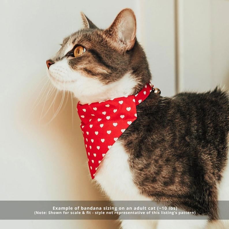 Pet Bandana Fall-ing For You Autumn Leaves Bandana for Cat Small Dog  Slide-on Cat Bandana  Over-the-Collar