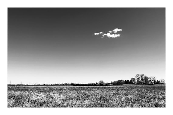 Field Trail,  Black and White Fine Art Photography Print   (Hi-Res Digital Download)