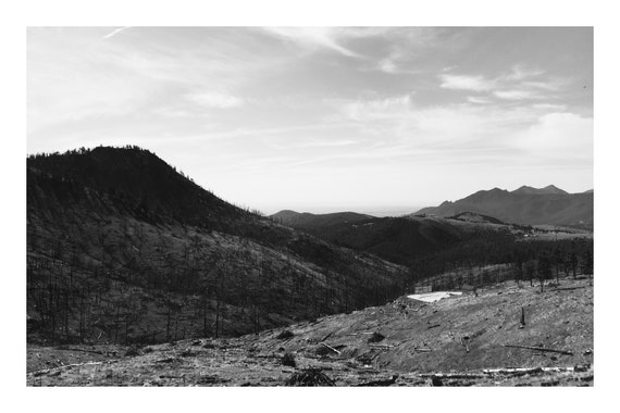 Foothill Vista,  Black and White Fine Art Photography Print   (Hi-Res Digital Download)