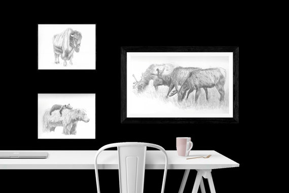 8x10 Photo Prints of Wildlife Pencil Sketches | Graphite | Art | Custom Pencil Art | Wilderness Art | Decor | Minimalist | Gift
