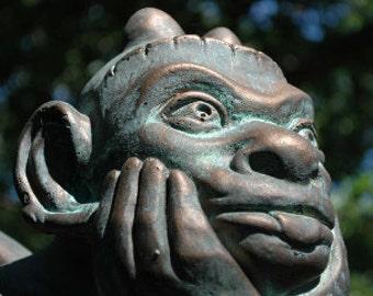 The Spitting Gargoyle of Notre Dame