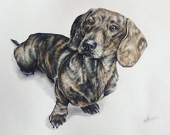 Custom drawn pencil portrait from photo