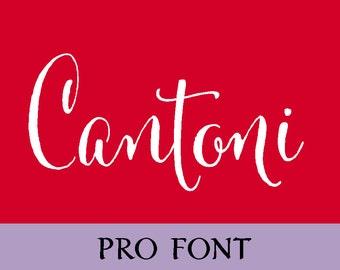 Cantoni Pro Calligraphy Font