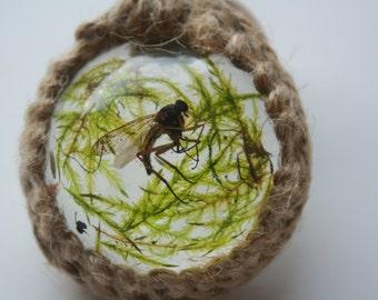 Fly (naturally deceased) and moss macrame pendant handmade in UK  oddities curio