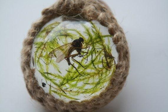 Moss flyr england