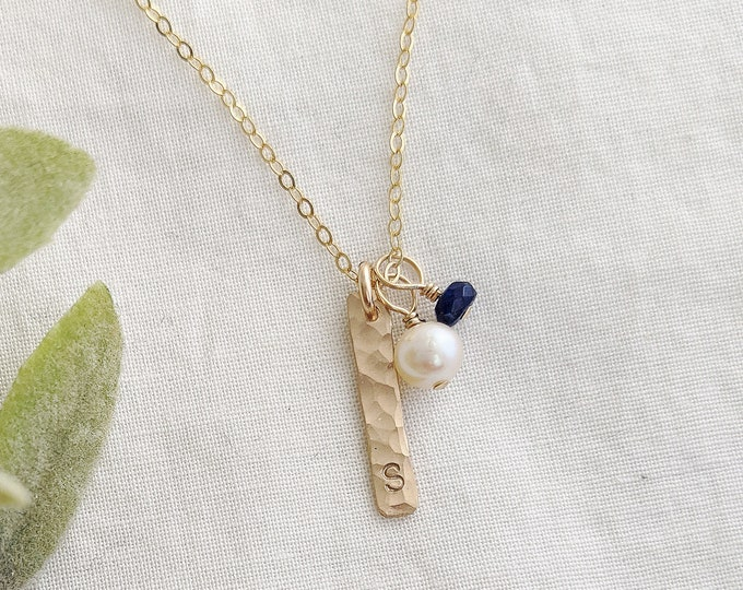 Gold Initial Necklace, Gold Bar Necklace, Custom Initial, Birthstone Jewelry, Birthday Gift