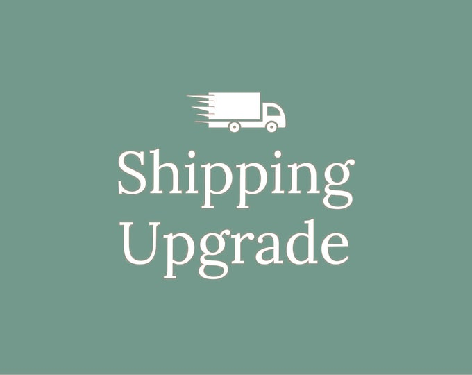 Upgrade Shipping | USPS Priority or USPS Express | Read description below before ordering