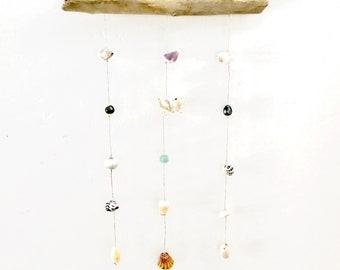 Seashell Decor Display, Seashell Hanger, Driftwood Display, Kauai Made